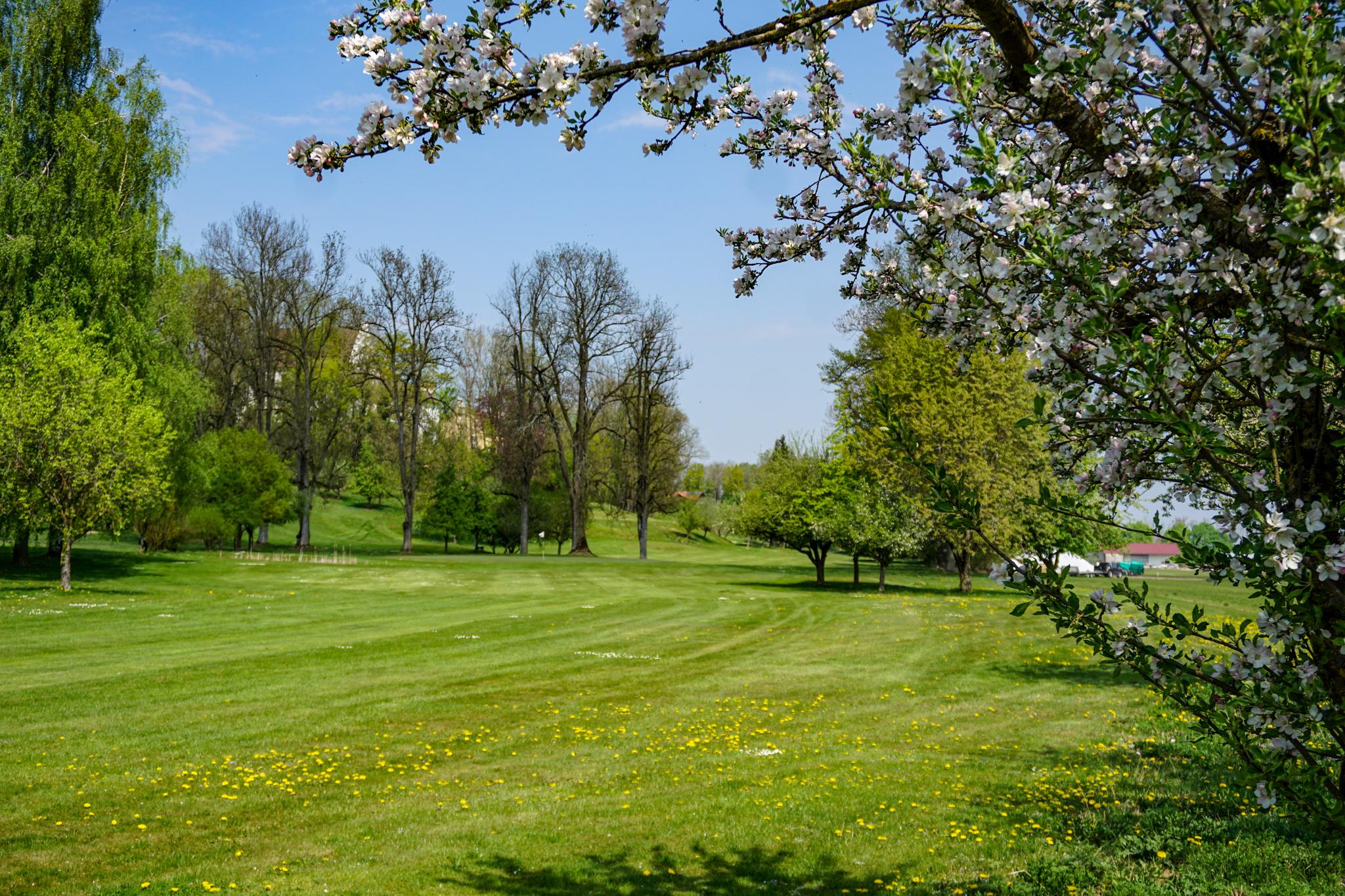 Golfclub Schloss Igling Bahn 6/15